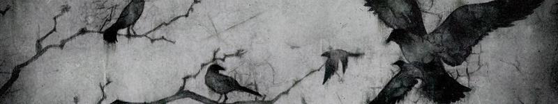 Marie Turnezolle