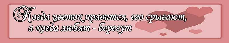 Юлиана Болотова
