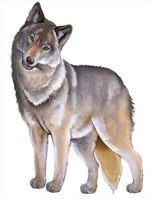 Серая волчица и Иван-царевич