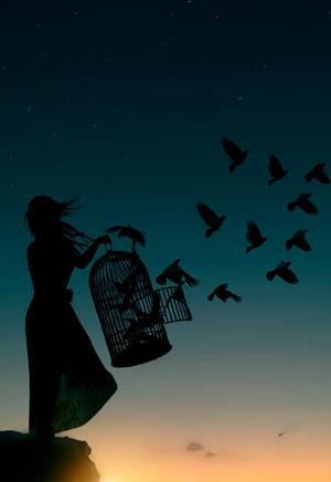 Выпускай своих птиц