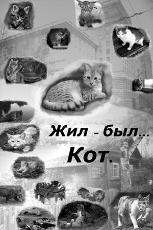 Жил-был... Кот.