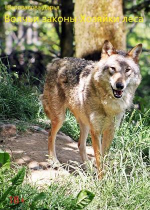 Волчьи законы Хозяйки леса