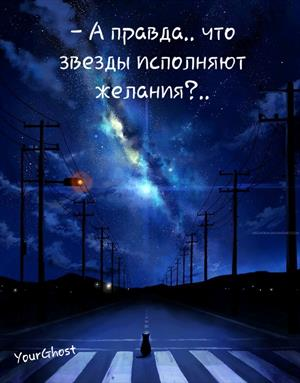 - А правда.. что звезды исполняют желания?..