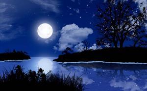 Бархат ночи