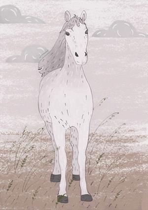 Лошадь по имени Лошадь
