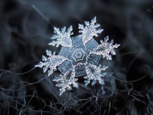 Морок и Мороз