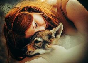 Книга вторая: Волчица. (Любовь зла - полюбишь и....)