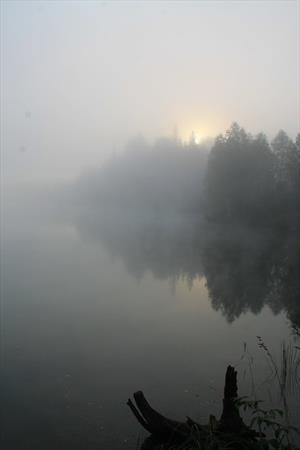 Город на озере