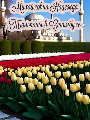 Для моих читателей,тюльпаны в Стамбуле