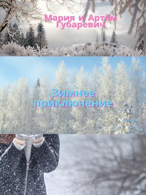 Зимнее приключение