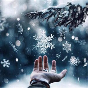 Снег приносит счастье (Бонус)