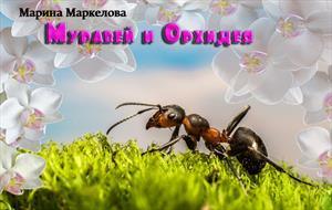 Муравей и Орхидея