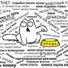 Соколова Надежда